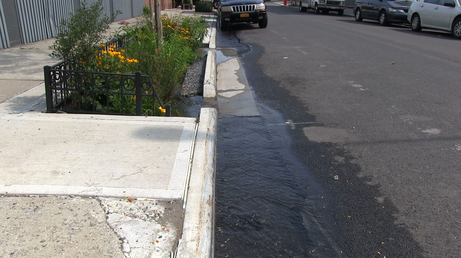 As City Expands Green Infrastructure In Brooklyn, Many Flood-Prone Areas Remain Off The Map